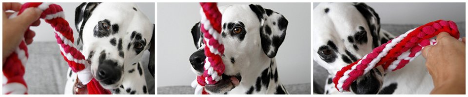 DIY Twisted Double Spiral Woven Fleece Dog Tug Toy