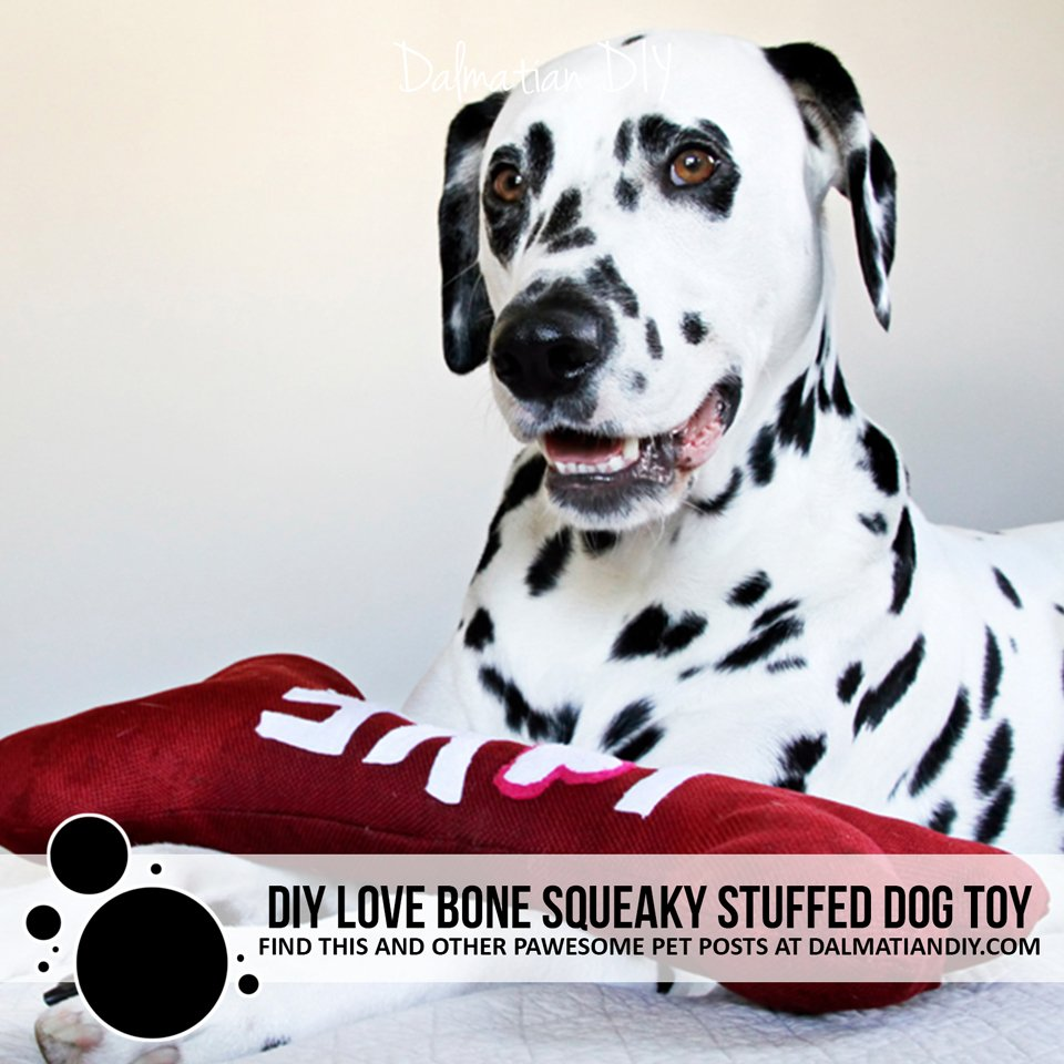 DIY LOVE bone Valentine's Day stuffed dog toy with squeakers