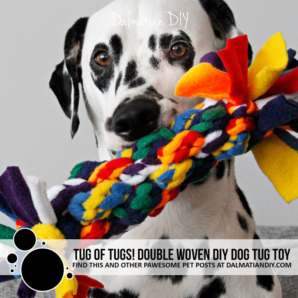 Tug of tugs! Giant DIY fleece dog tug toy