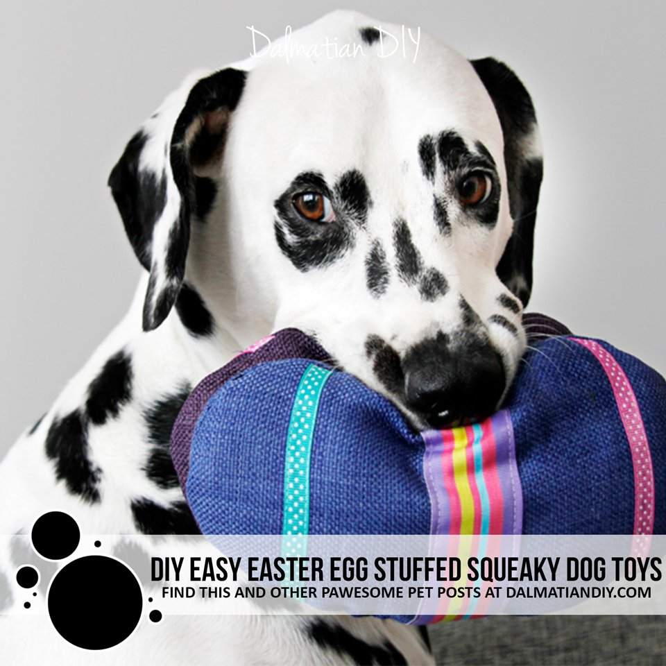 DIY easy sewing Easter egg stuffed dog toys