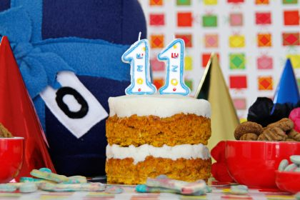 DIY dog birthday party with homemade cake, toys, and treats