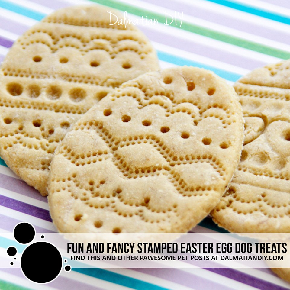 Easy homemade stamped Easter egg dog treats