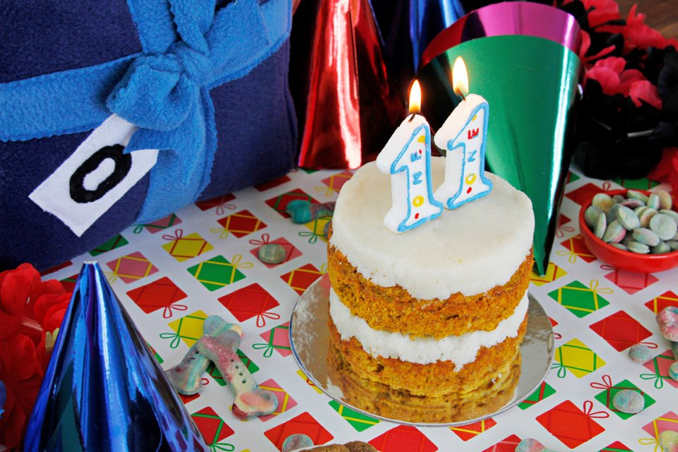 Homemade dog-friendly cake with candles for Oli's 11th birthday