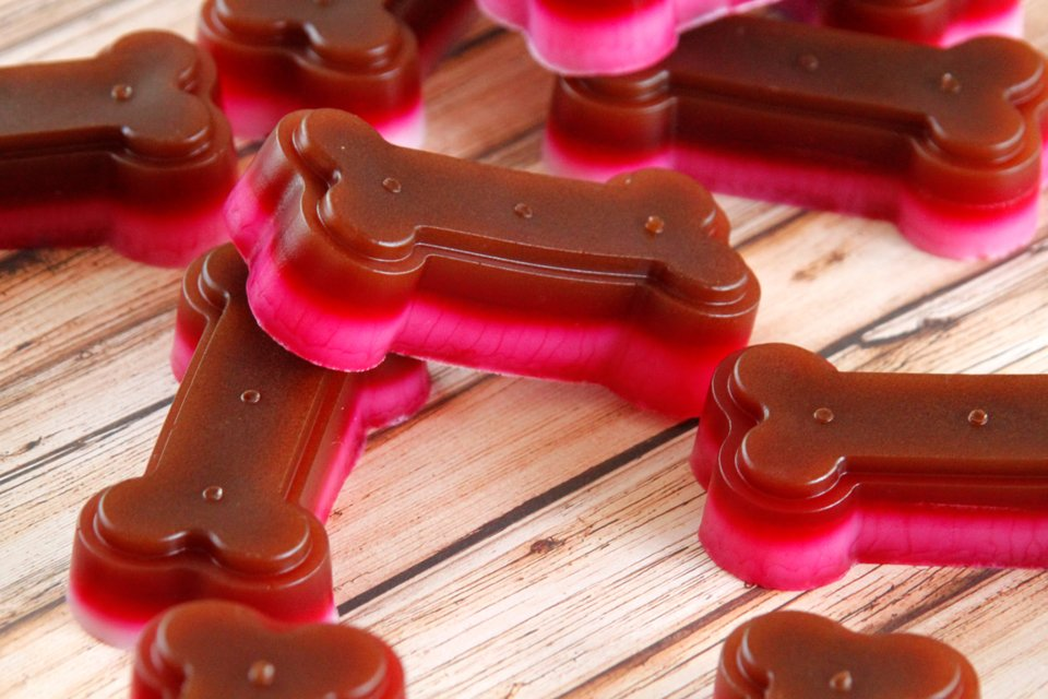 Homemade Jelly Tip carob yogurt gelatin gummy dog treats