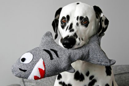 DIY stuffed squeaky DIY shark dog toy