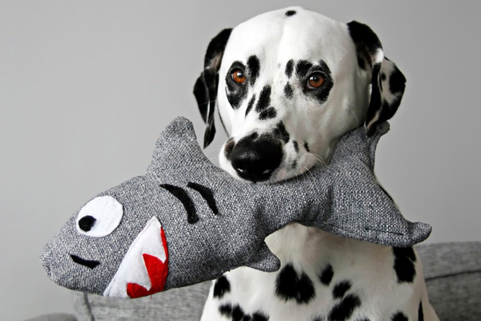 DIY stuffed squeaky DIY shark dog toy