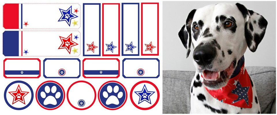 Free printable red and blue star dog treat tags and labels