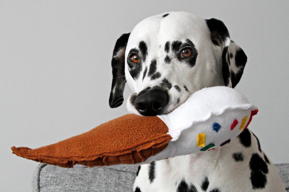 Dalmatian dog with homemade ice cream cone stuffed toy