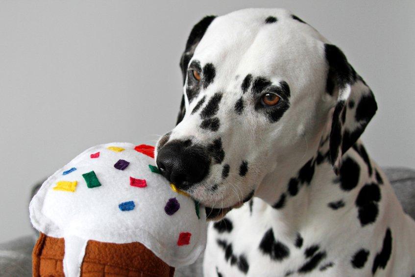 DIY ice cream cone dog toy