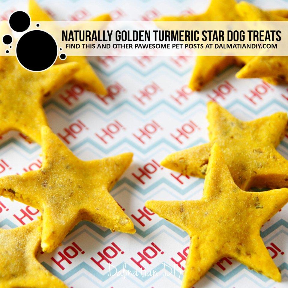 Naturally golden turmeric Christmas star dog treat recipe