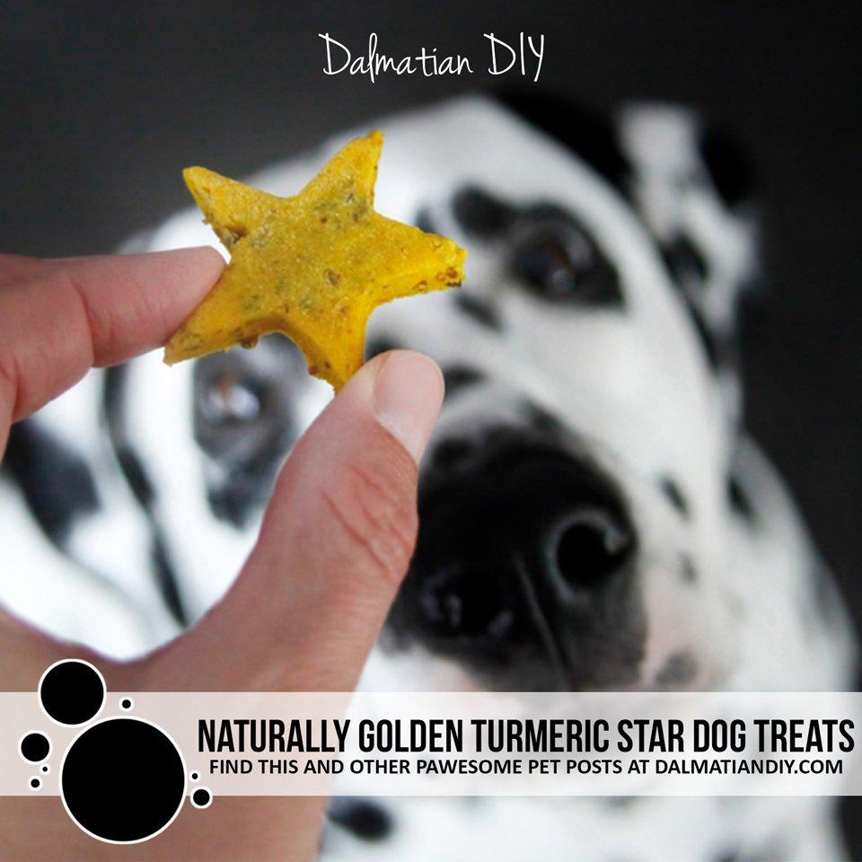 Naturally golden turmeric star dog treat recipe