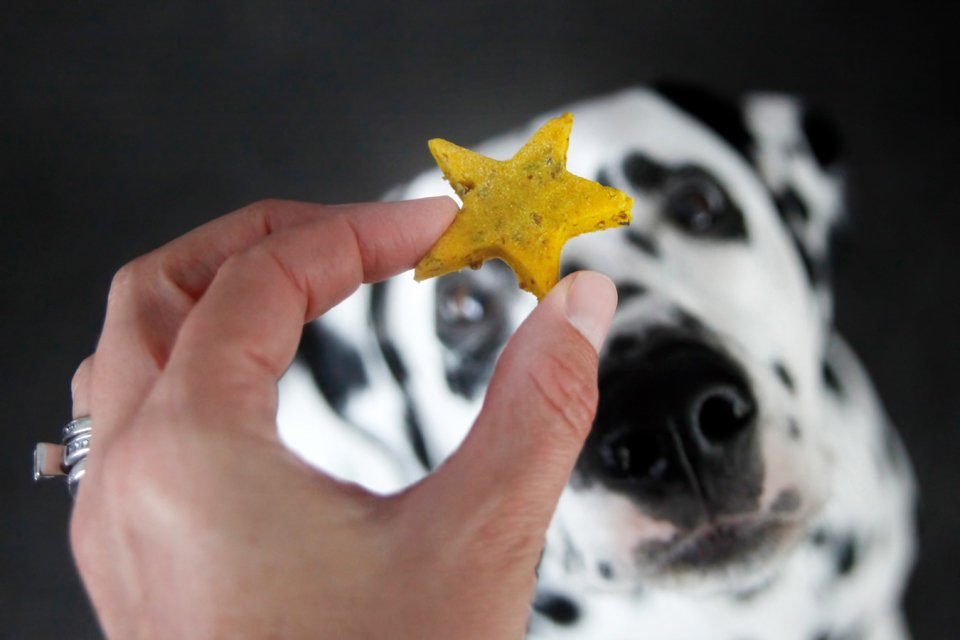 Naturally golden turmeric sour cream star dog treats