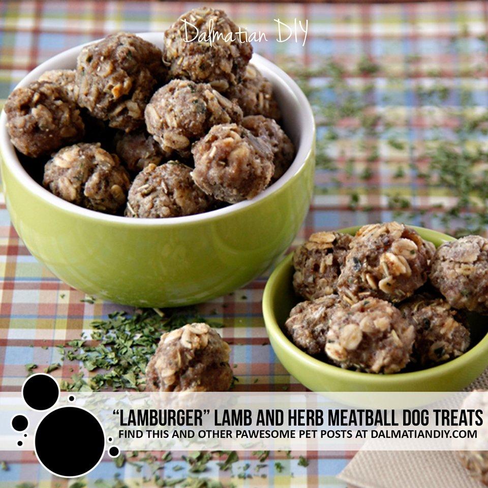 Lamburger lamb and herb meatball dog treat recipe