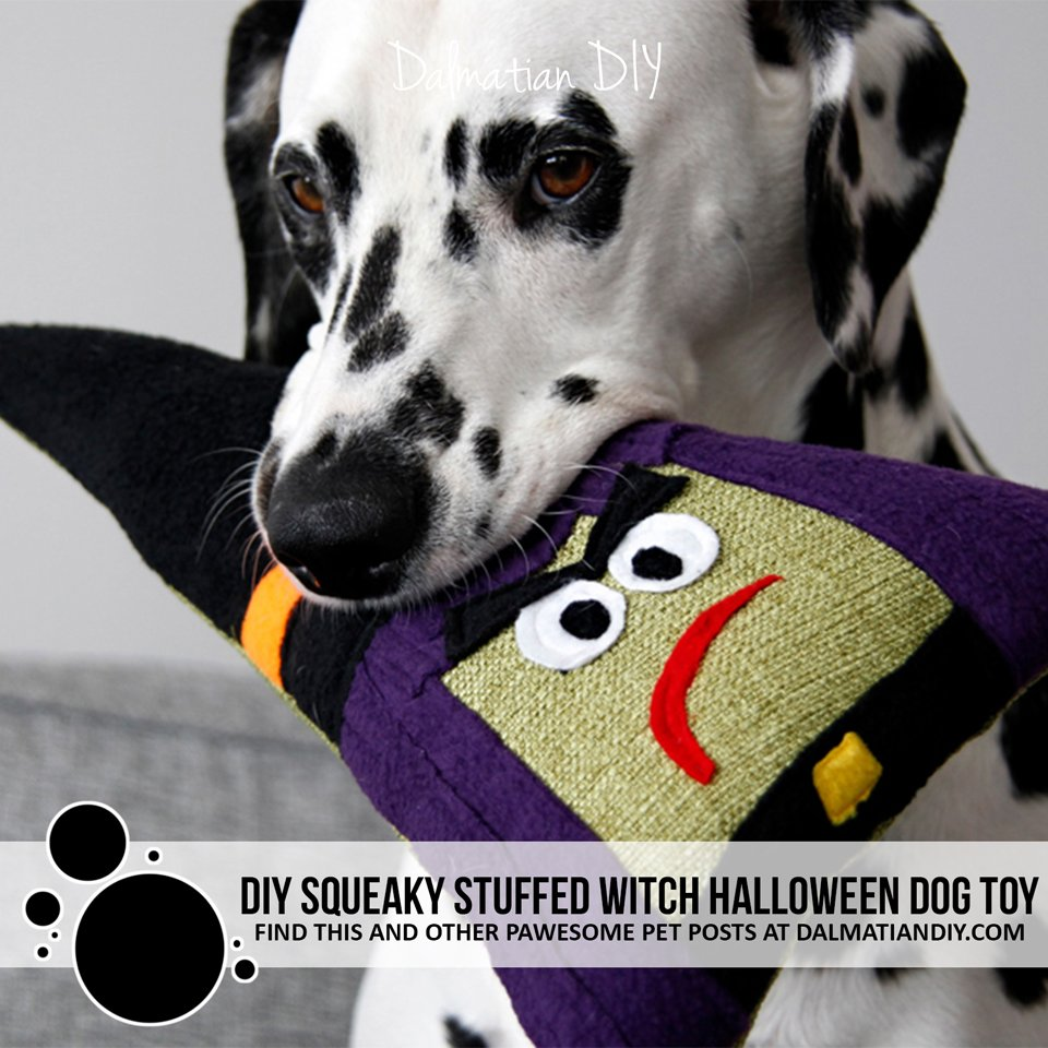 DIY squeaky stuffed witch Halloween dog toy