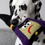 DIY witch dog toy with stuffing and squeakers