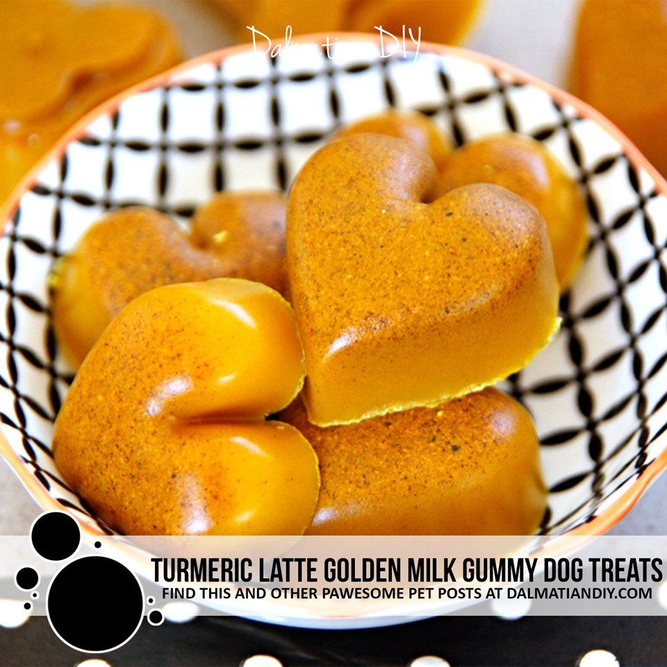 Turmeric latte golden milk gummy dog treat recipe