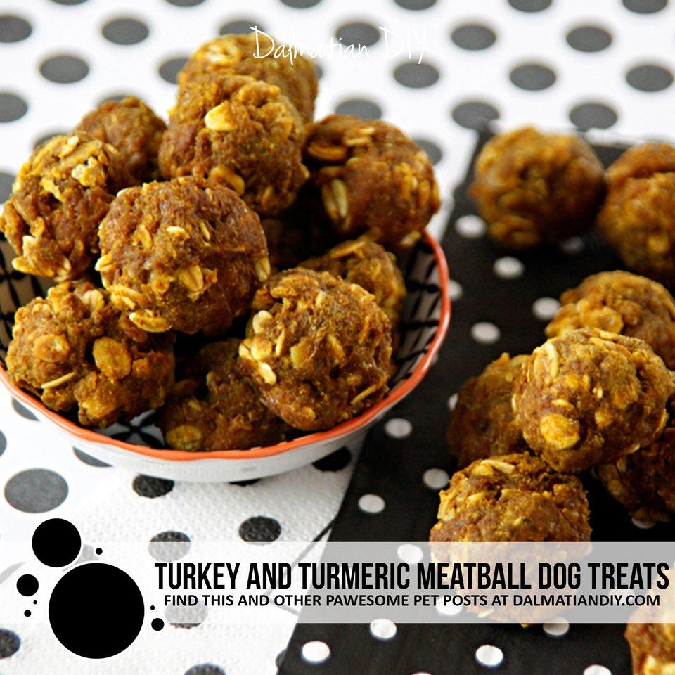 Recipe for turkey meatball dog treats with turmeric