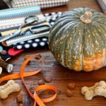 Thanksgiving pet craft and treat vignette