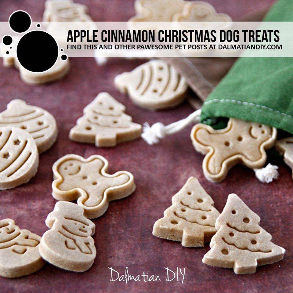 Homemade apple cinnamon dog treat recipe