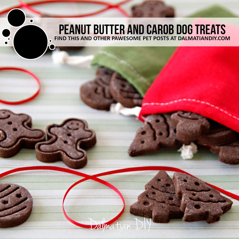 Christmas plunger cutter peanut butter and carob dog treat recipe
