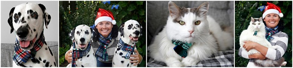 Matching fleece scarves for people and pets (dogs or cats) in family Christmas photos