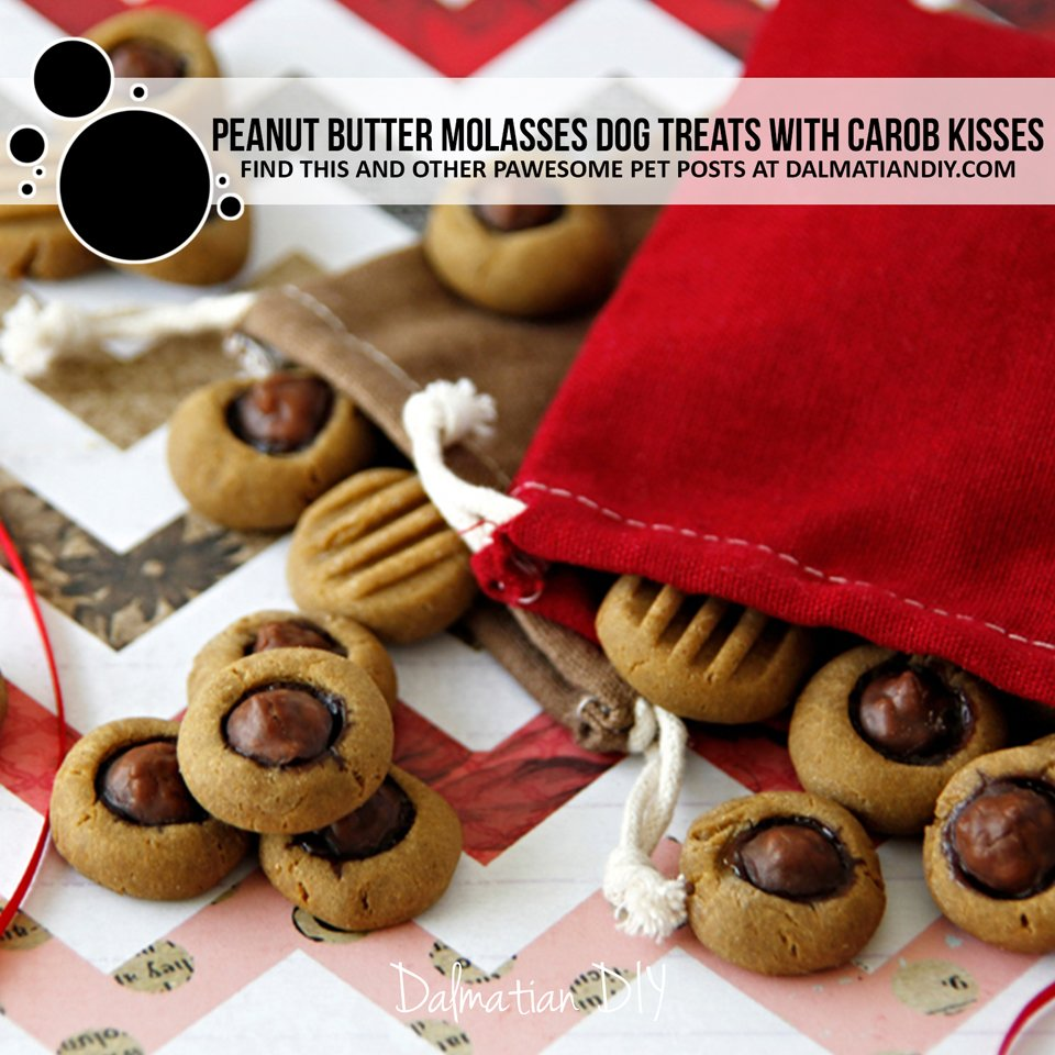 Recipe for peanut butter molasses dog treats topped with carob drop kisses.
