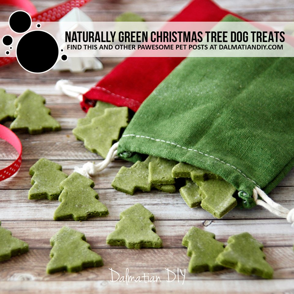 Naturally green Christmas tree dog treats and recipe