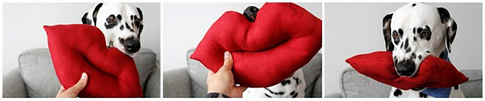 Homemade giant lips kiss-shaped dog toy