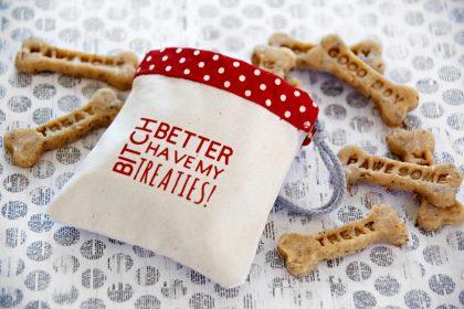 DIY Cricut iron on customised typography dog treat bag