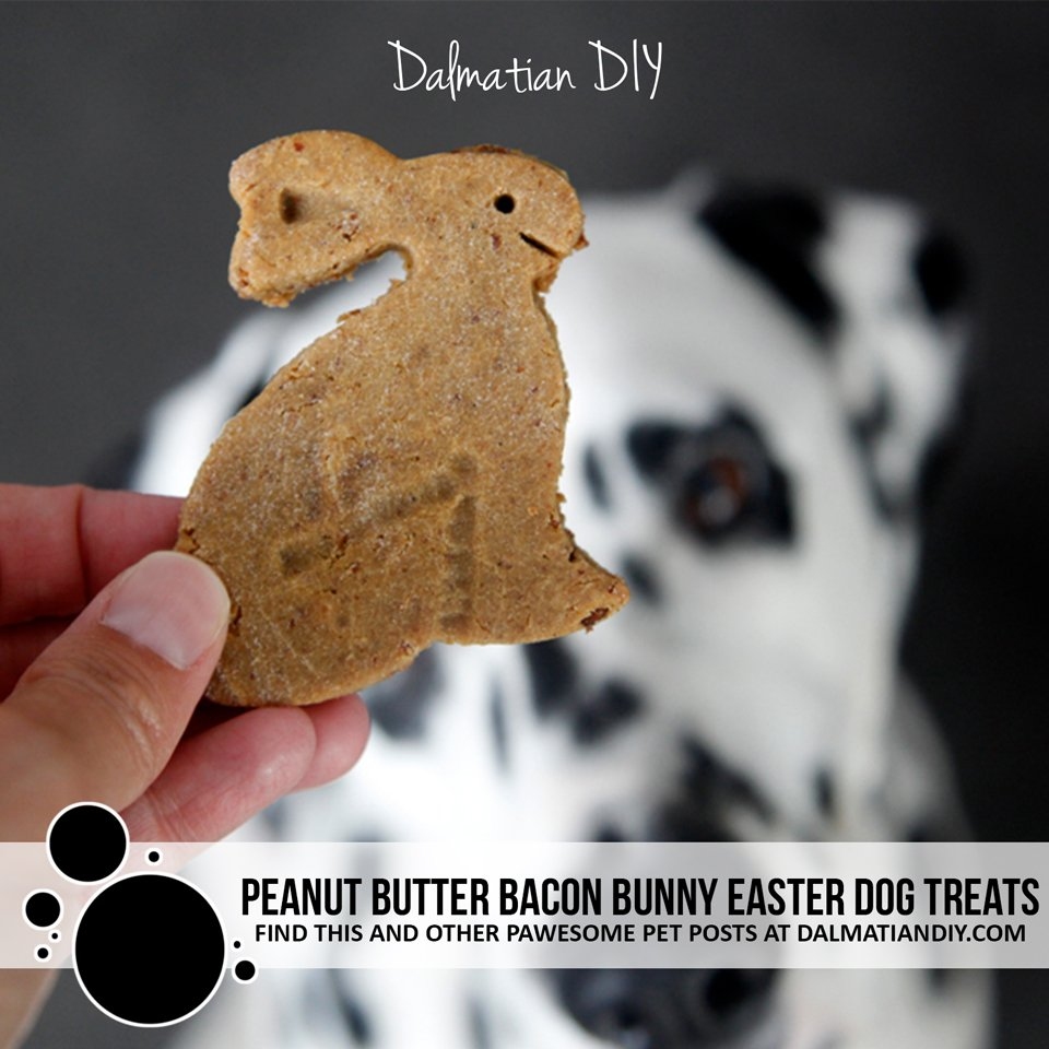 Recipe homemade peanut butter bacon Easter bunny dog treats