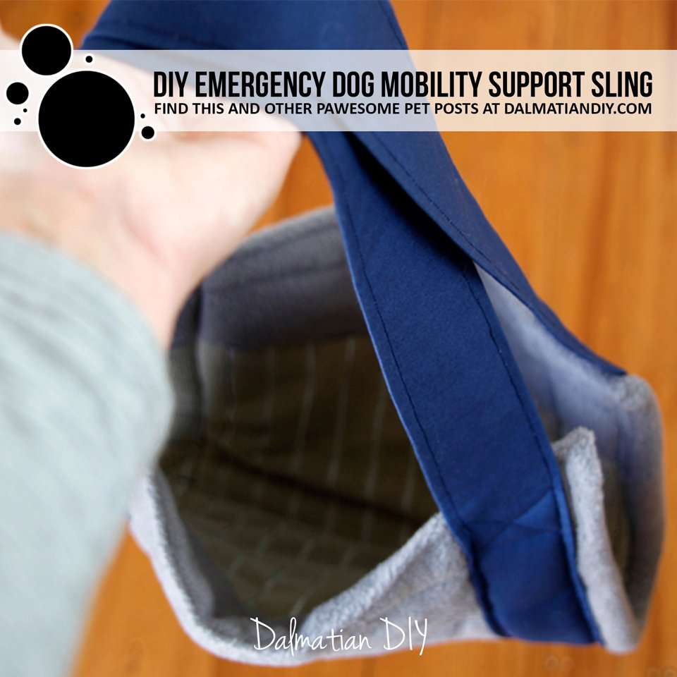 DIY emergency dog mobility support sling