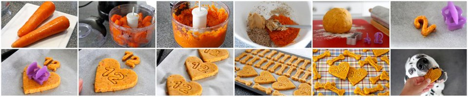 Making homemade carrot and peanut butter dog treat recipe