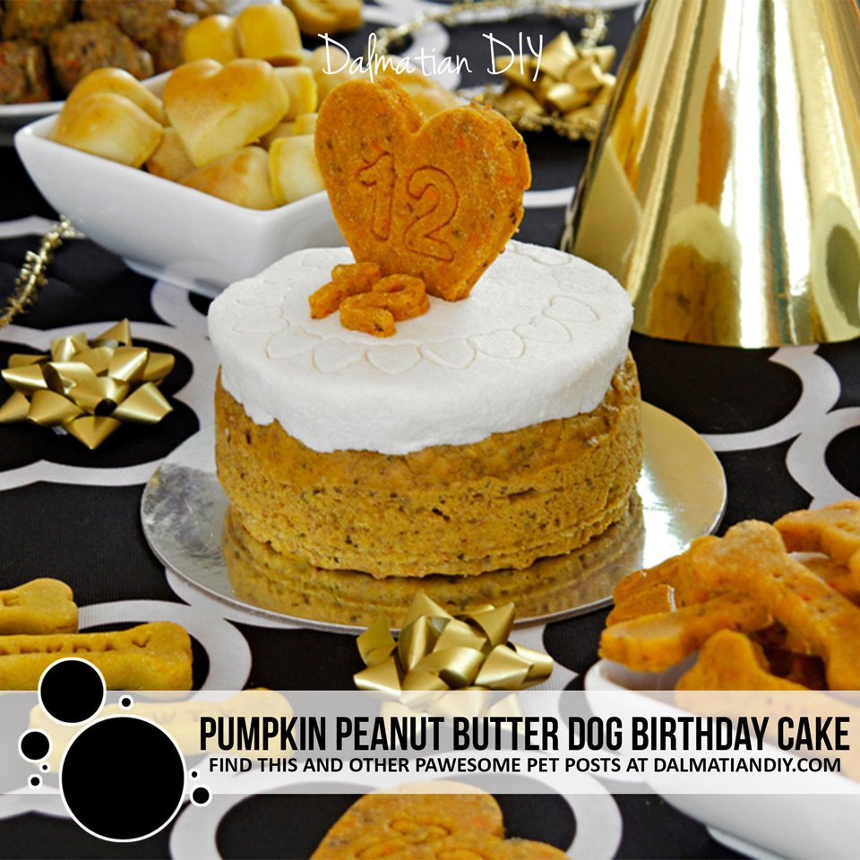 Pumpkin and peanut butter dog birthday cake with coconut yogurt frosting recipe
