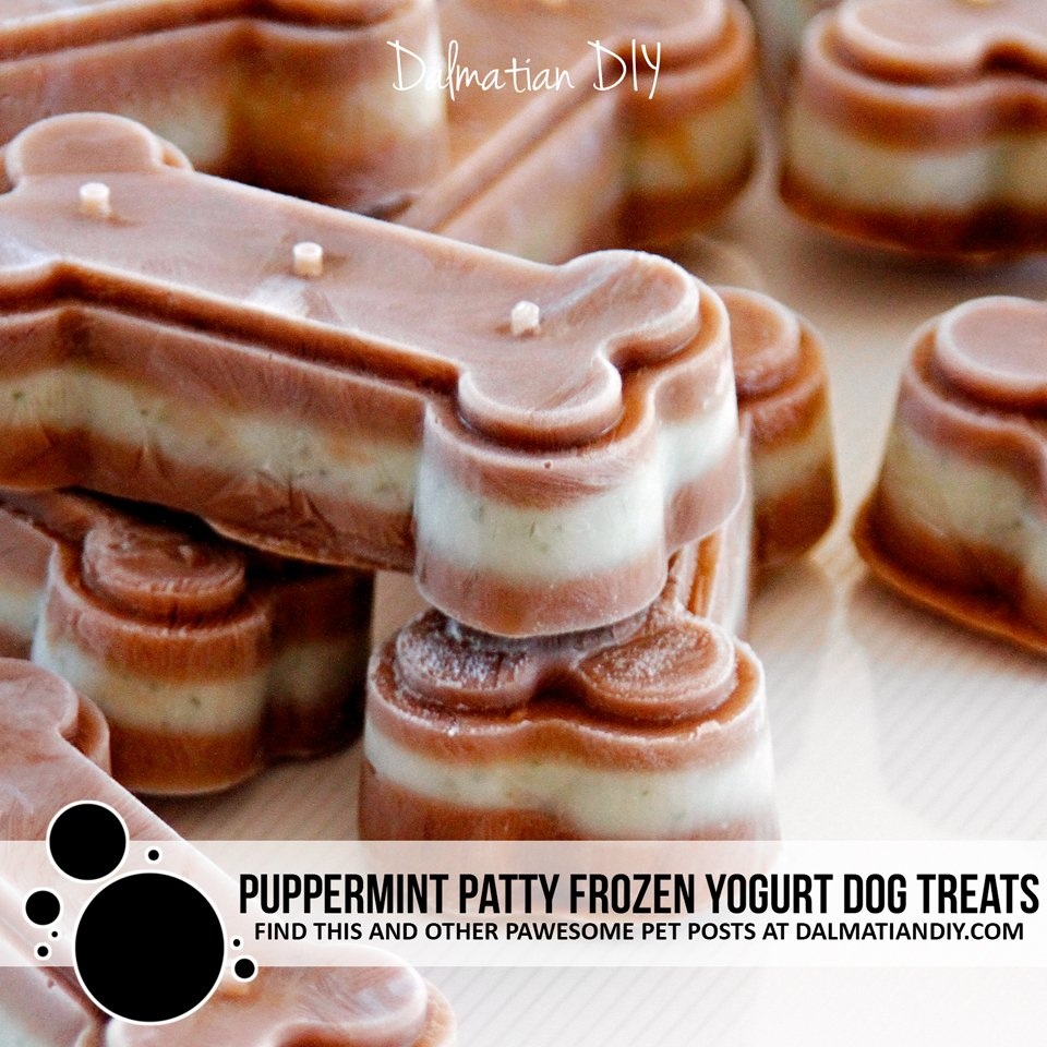 Puppermint patty carob mint frozen yogurt dog treats
