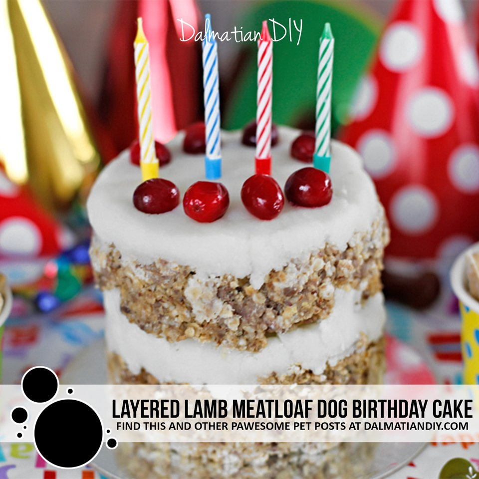 Layered lamb meatloaf dog birthday cake recipe with mashed potato frosting
