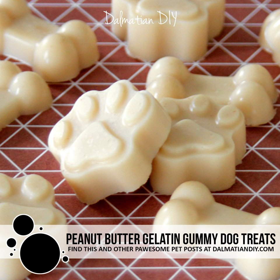 Peanut butter gelatin gummy treat recipe