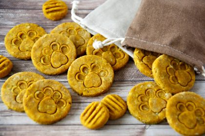 Pumpkin and herb dog treat recipe