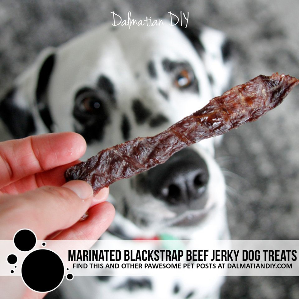 Marinated blackstrap molasses beef jerky dog treat recipe