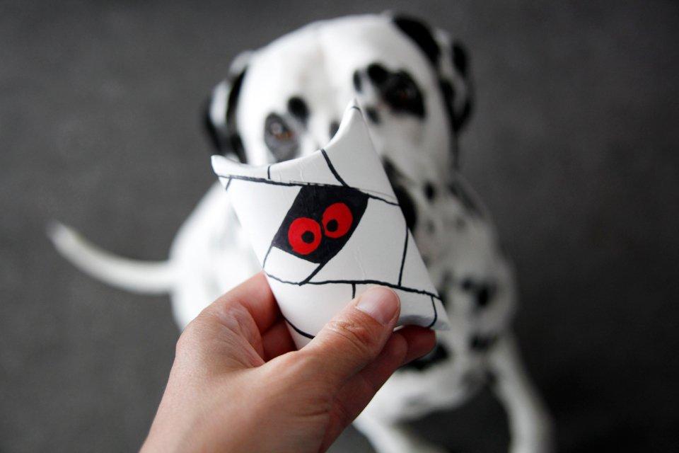 Dalmatian dog looking at Halloween mummy dog treat pillow box