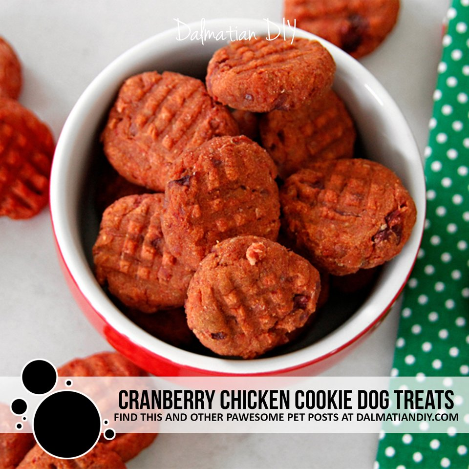 Cranberry chicken dog treat recipe