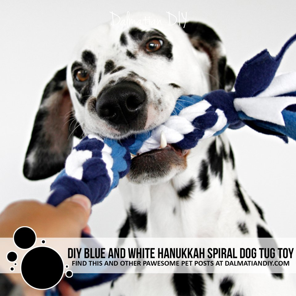 DIY blue and white Hanukkah twisted double spiral fleece dog tug toy