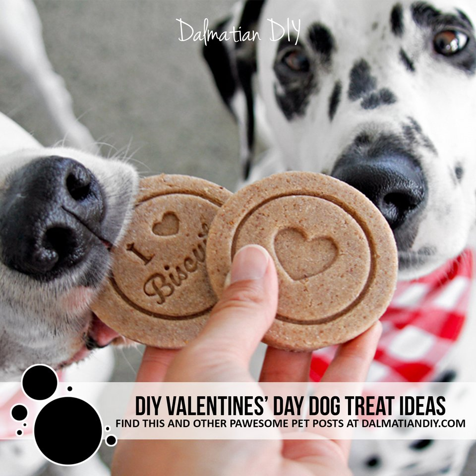 DIY homemade Valentine's Day dog treat ideas