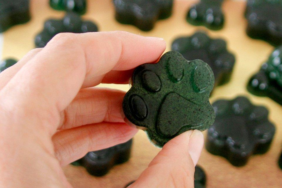 Simple spirulina gelatin gummy dog treat recipe