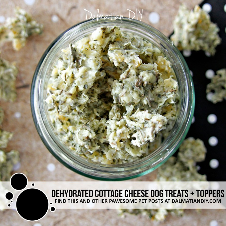 DIY dehydrated cottage cheese dog treats and food toppers