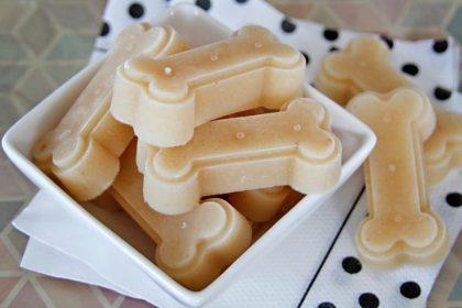 Bone broth and yogurt frozen dog treat recipe