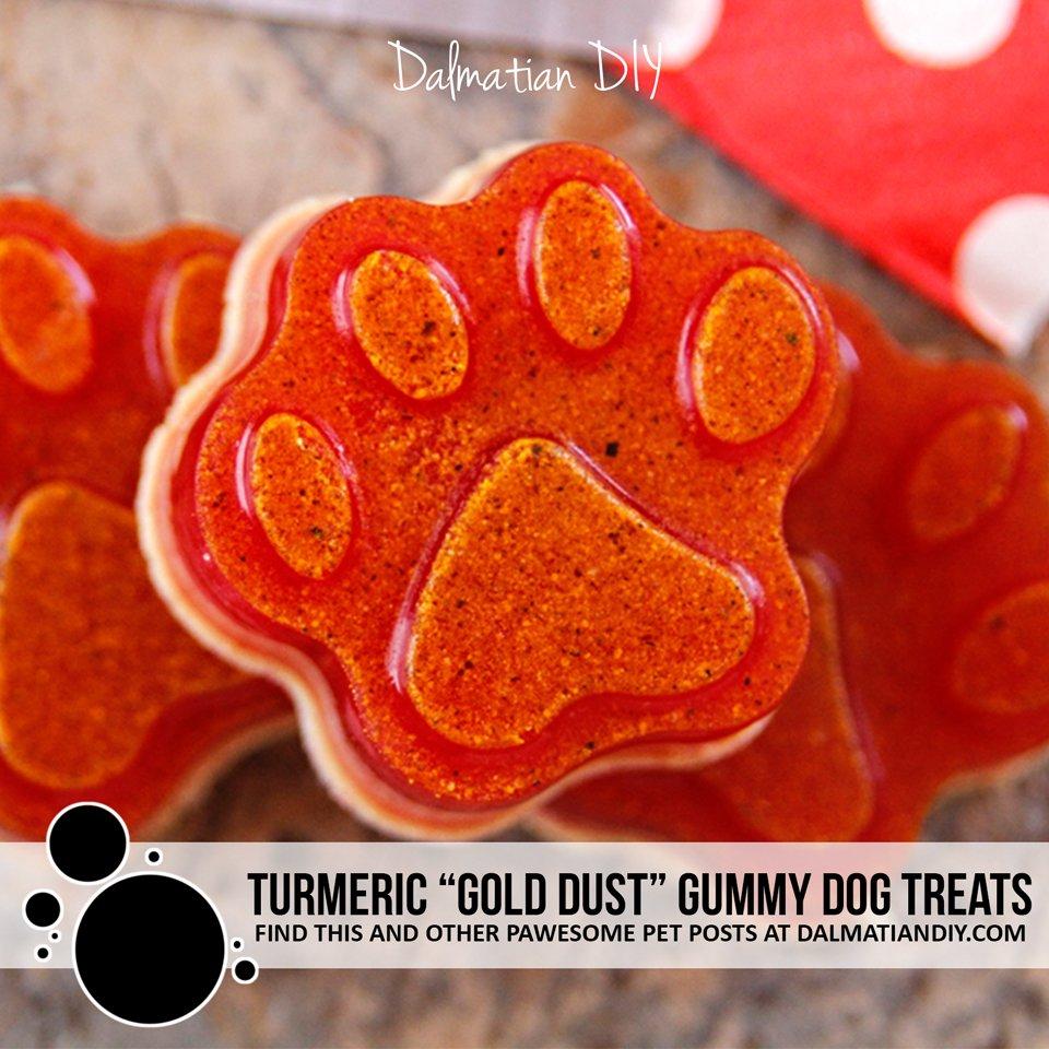 "Turmeric ""Gold Dust"" Gelatin Gummy Dog Treats"