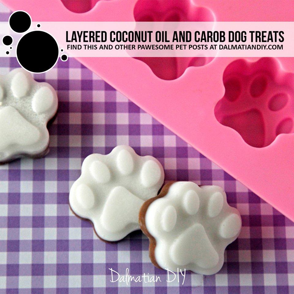 Layered coconut oil and carob dog treat recipe