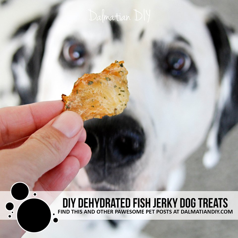 DIY dehydrated fish jerky dog treats with optional marinade