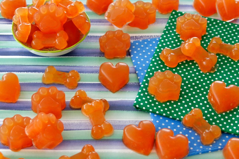 Homemade watermelon gummy dog treat recipe