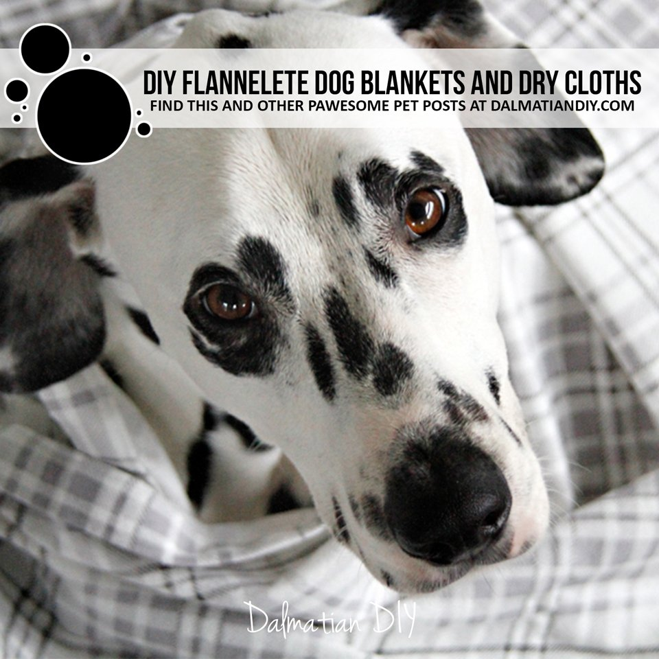 DIY flannelette dog blankets and dry cloths